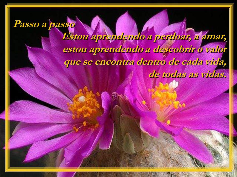 O amor perdoa, esquece, extingue todos os traços de dor no coração. O amor perdoa, esquece, extingue todos os traços de dor no coração.