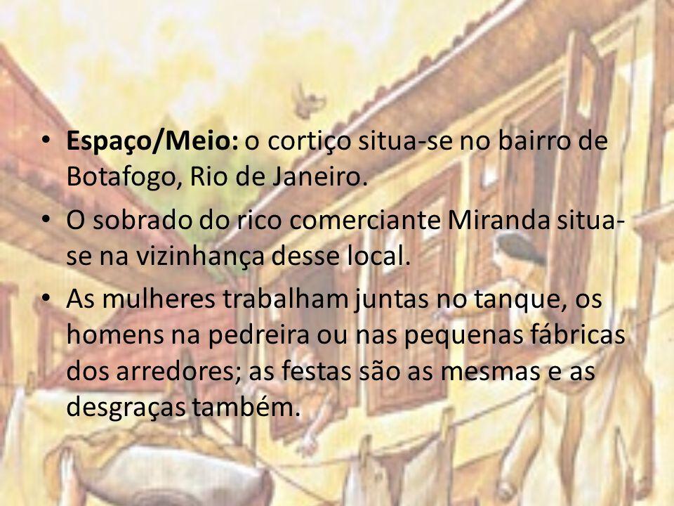 Espaço/Meio: o cortiço situa-se no bairro de Botafogo, Rio de Janeiro. O sobrado do rico comerciante Miranda situa- se na vizinhança desse local. As m