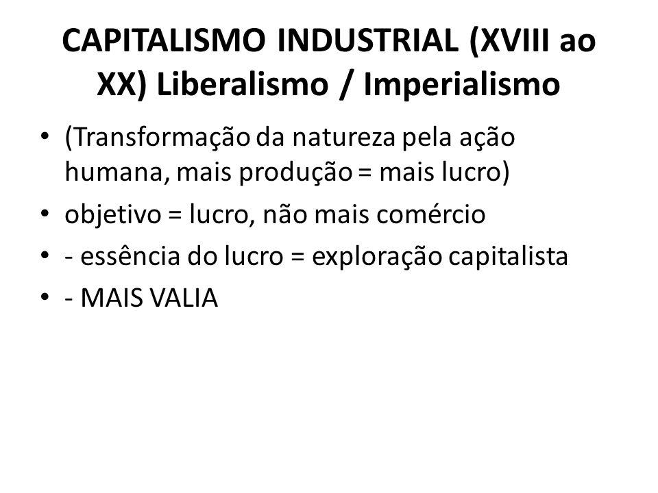 CAPITALISMO INDUSTRIAL (XVIII ao XX) Liberalismo / Imperialismo (Transformação da natureza pela ação humana, mais produção = mais lucro) objetivo = lu