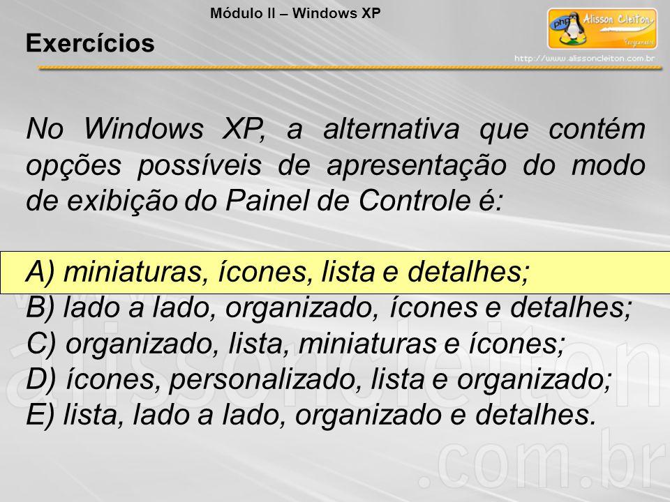 No Windows XP, a alternativa que contém opções possíveis de apresentação do modo de exibição do Painel de Controle é: A) miniaturas, ícones, lista e d