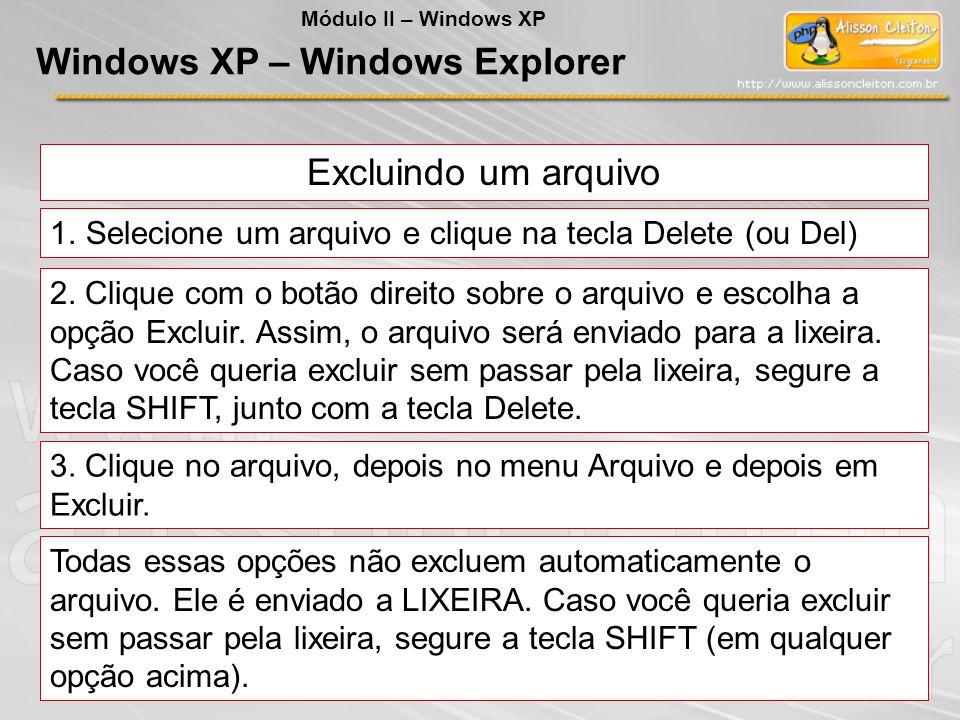 Excluindo um arquivo 1.Selecione um arquivo e clique na tecla Delete (ou Del) 2. Clique com o botão direito sobre o arquivo e escolha a opção Excluir.