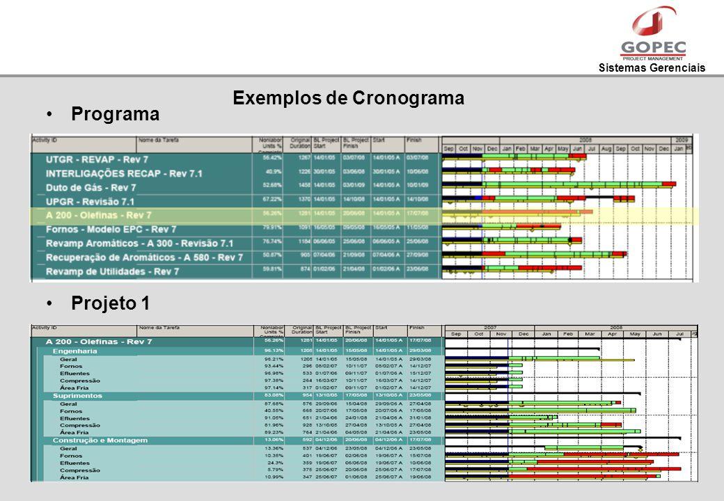 Sistemas Gerenciais Exemplos de Cronograma Programa Projeto 1