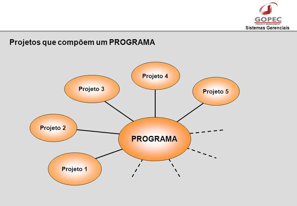Sistemas Gerenciais Projetos que compõem um PROGRAMA Projeto 2 Projeto 1 Projeto 3Projeto 4 Projeto 5 PROGRAMA