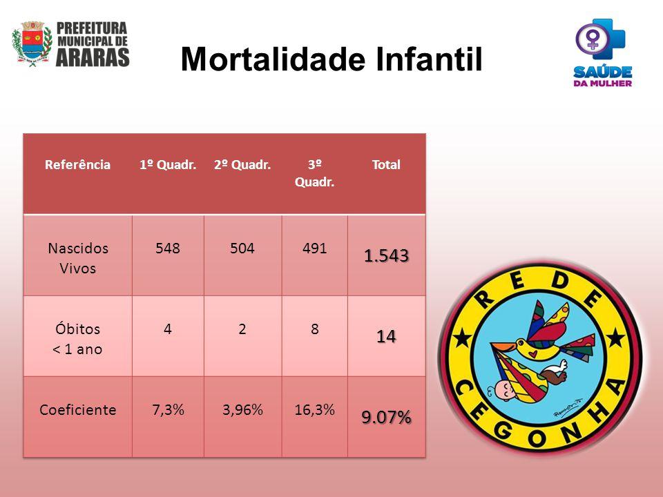 Mortalidade Infantil