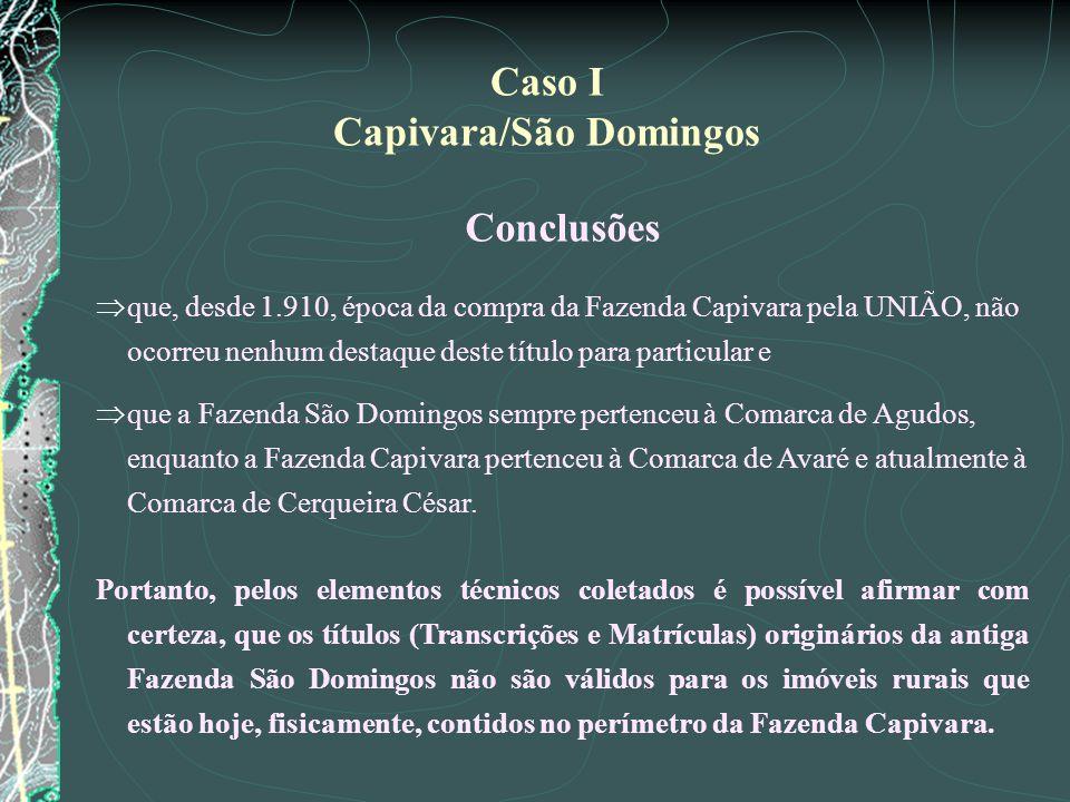 Conclusões que, desde 1.910, época da compra da Fazenda Capivara pela UNIÃO, não ocorreu nenhum destaque deste título para particular e que a Fazenda