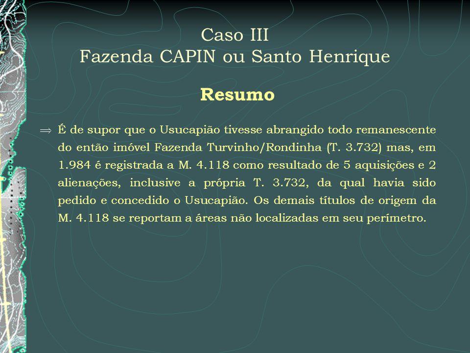 Caso III Fazenda CAPIN ou Santo Henrique Resumo É de supor que o Usucapião tivesse abrangido todo remanescente do então imóvel Fazenda Turvinho/Rondin