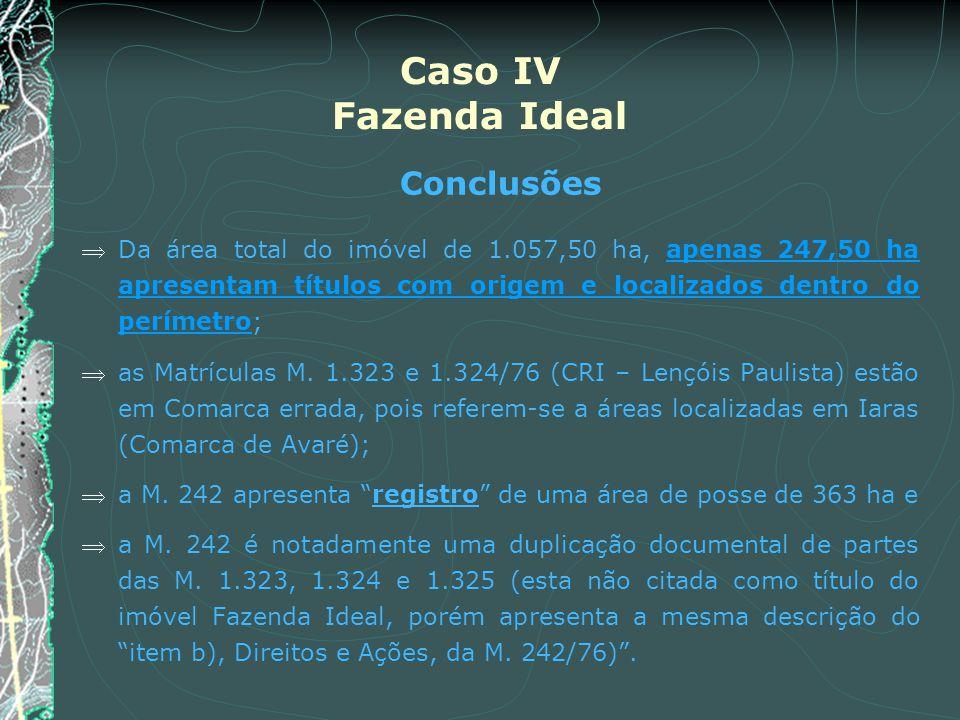 Caso IV Fazenda Ideal Conclusões Da área total do imóvel de 1.057,50 ha, apenas 247,50 ha apresentam títulos com origem e localizados dentro do períme