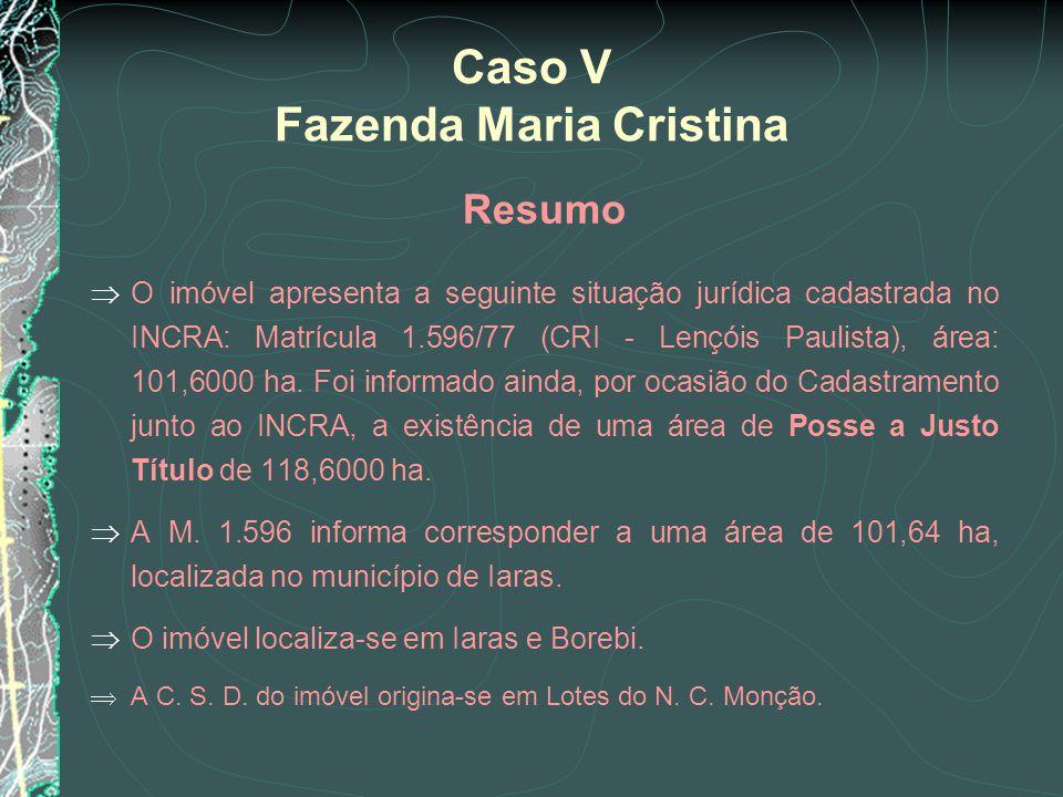 Resumo O imóvel apresenta a seguinte situação jurídica cadastrada no INCRA: Matrícula 1.596/77 (CRI - Lençóis Paulista), área: 101,6000 ha. Foi inform