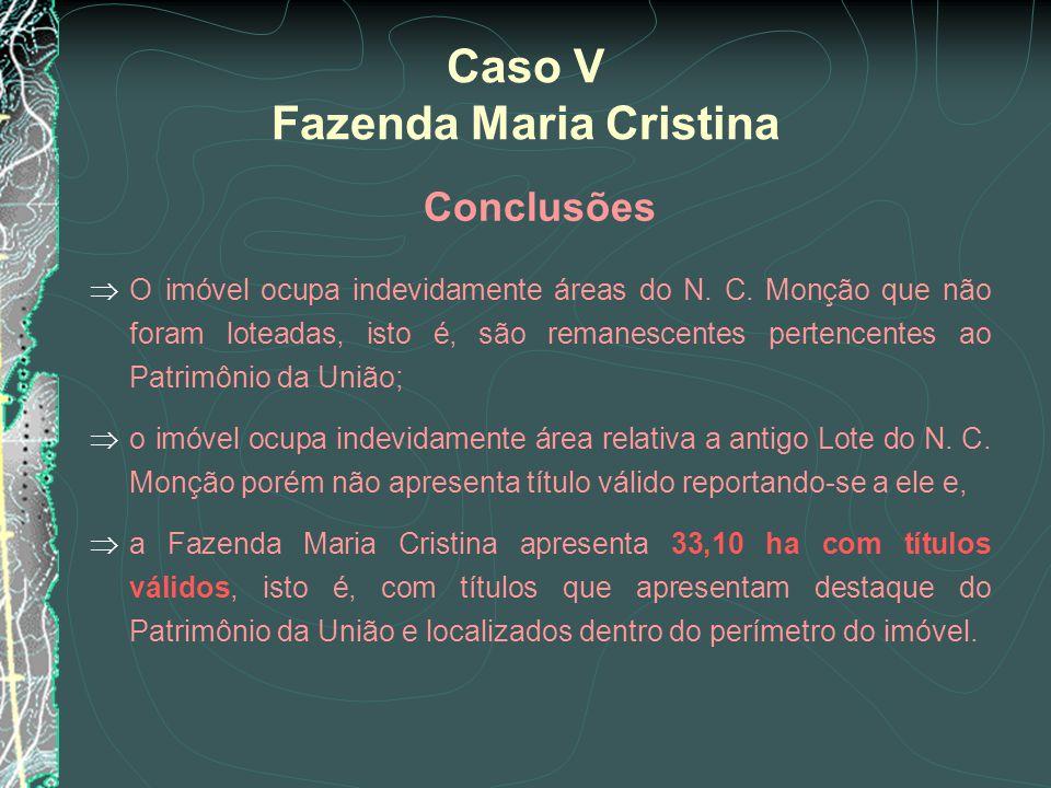 Caso V Fazenda Maria Cristina Conclusões O imóvel ocupa indevidamente áreas do N. C. Monção que não foram loteadas, isto é, são remanescentes pertence