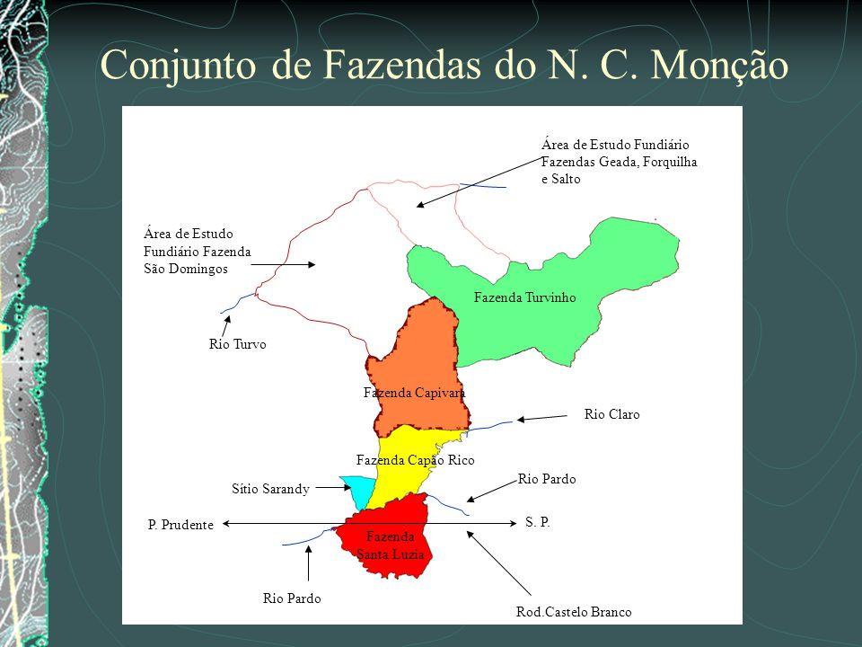 Fazenda Santa Luzia Sítio Sarandy Fazenda Capão Rico Fazenda Capivara Fazenda Turvinho Área de Estudo Fundiário Fazendas Geada, Forquilha e Salto Área