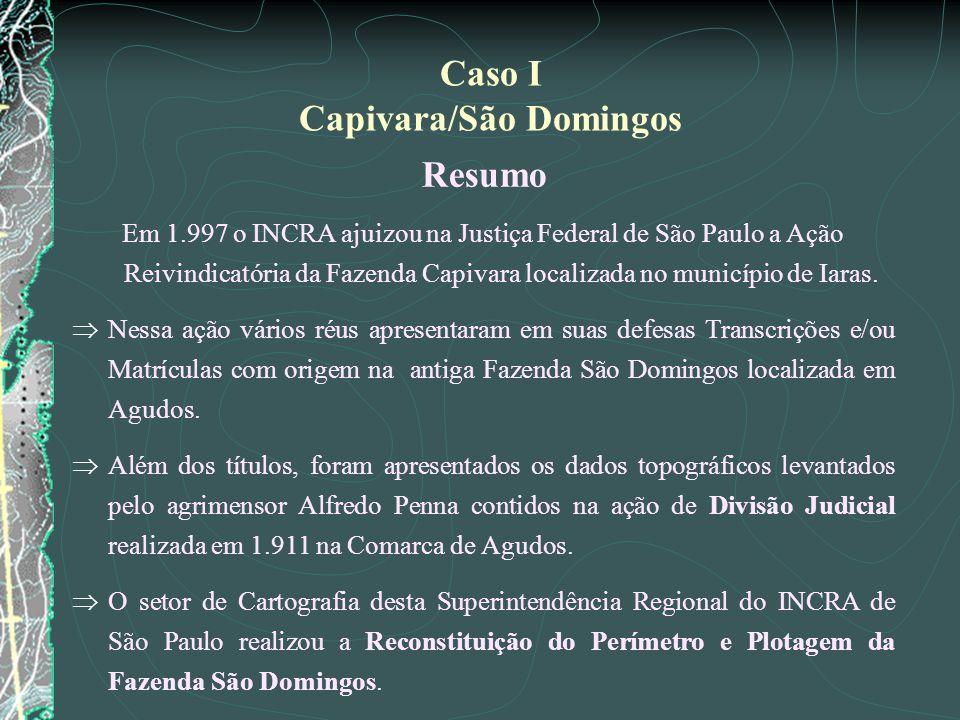 Caso I Capivara/São Domingos Resumo Em 1.997 o INCRA ajuizou na Justiça Federal de São Paulo a Ação Reivindicatória da Fazenda Capivara localizada no