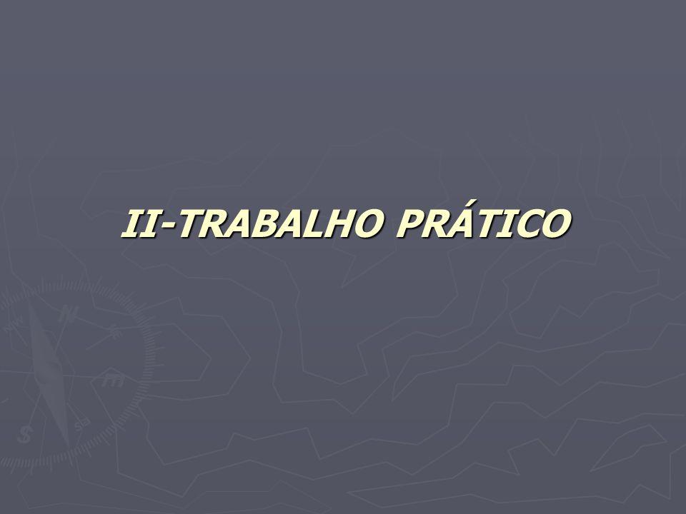 II-TRABALHO PRÁTICO