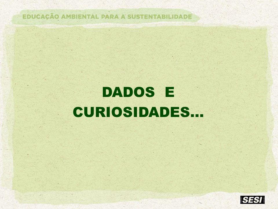 DADOS E CURIOSIDADES...