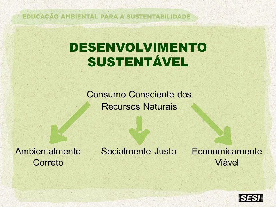 DESENVOLVIMENTO SUSTENTÁVEL Consumo Consciente dos Recursos Naturais Socialmente Justo Ambientalmente Correto Economicamente Viável