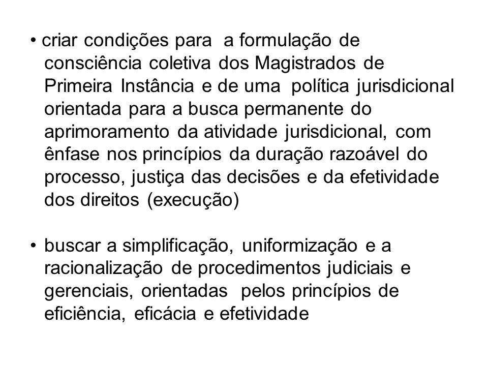 criar condições para a formulação de consciência coletiva dos Magistrados de Primeira Instância e de uma política jurisdicional orientada para a busca permanente do aprimoramento da atividade jurisdicional, com ênfase nos princípios da duração razoável do processo, justiça das decisões e da efetividade dos direitos (execução) buscar a simplificação, uniformização e a racionalização de procedimentos judiciais e gerenciais, orientadas pelos princípios de eficiência, eficácia e efetividade