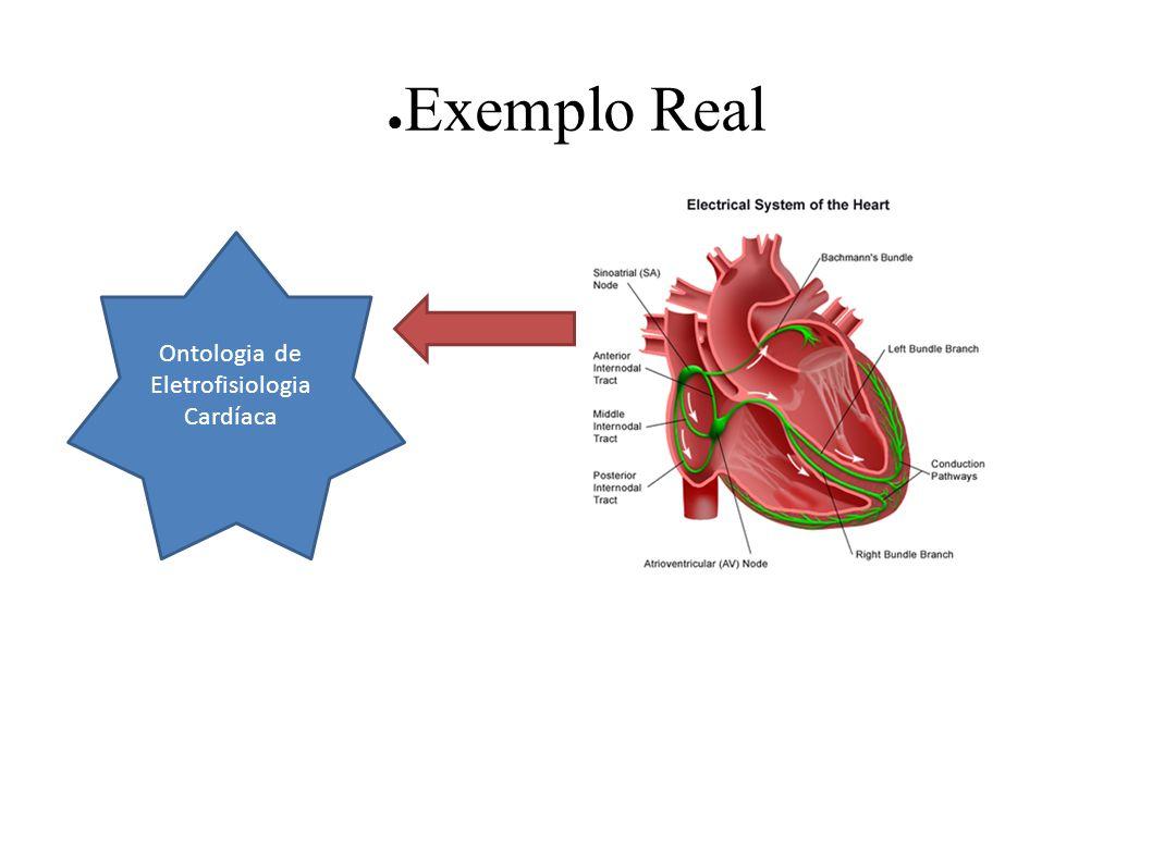 Exemplo Real Ontologia de Eletrofisiologia Cardíaca