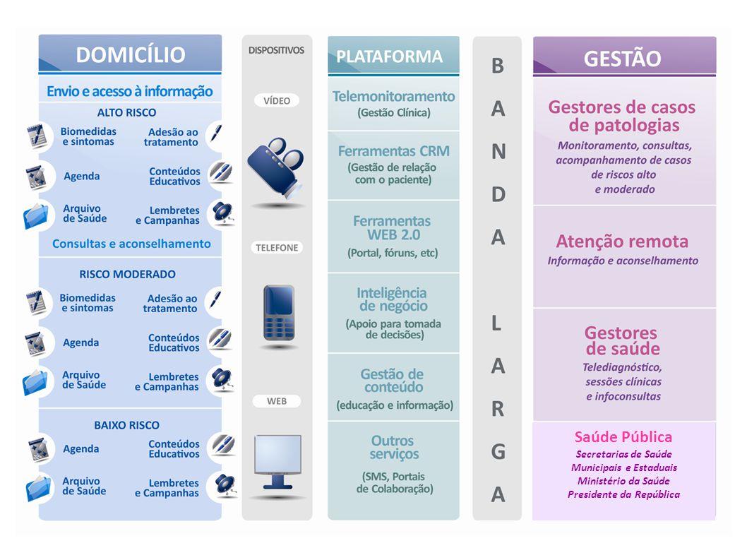 Saúde Pública Secretarias de Saúde Municipais e Estaduais Ministério da Saúde Presidente da República