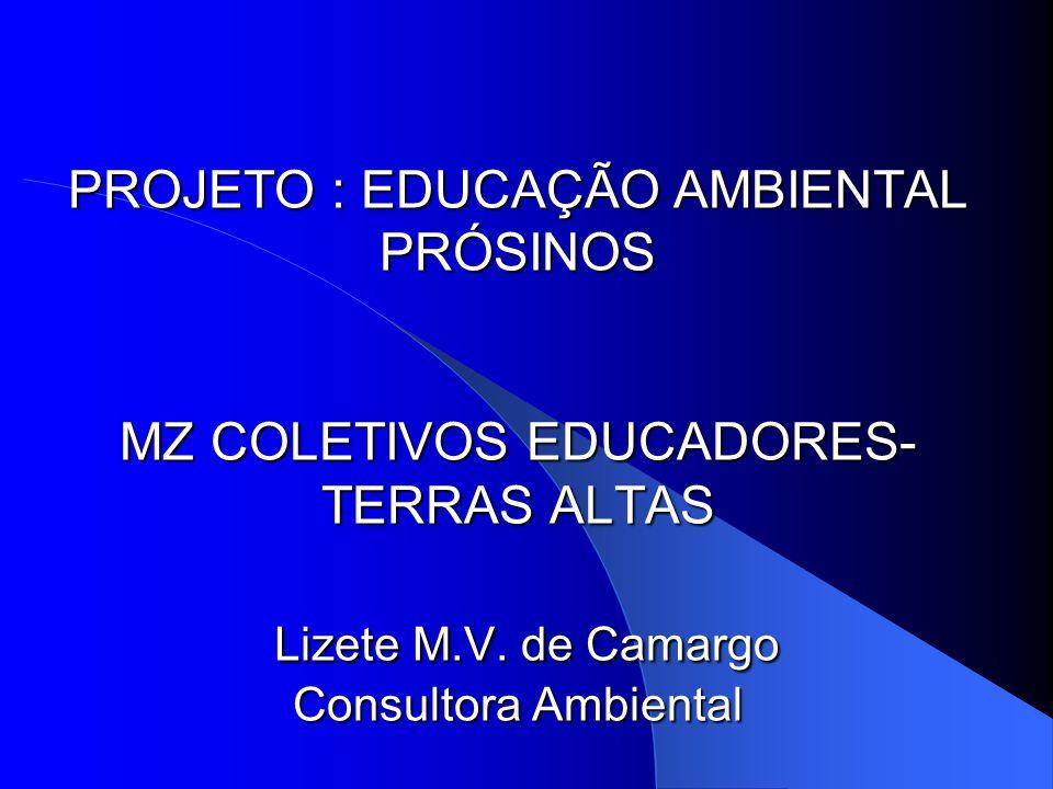 PROJETO : EDUCAÇÃO AMBIENTAL PRÓSINOS MZ COLETIVOS EDUCADORES- TERRAS ALTAS Lizete M.V.