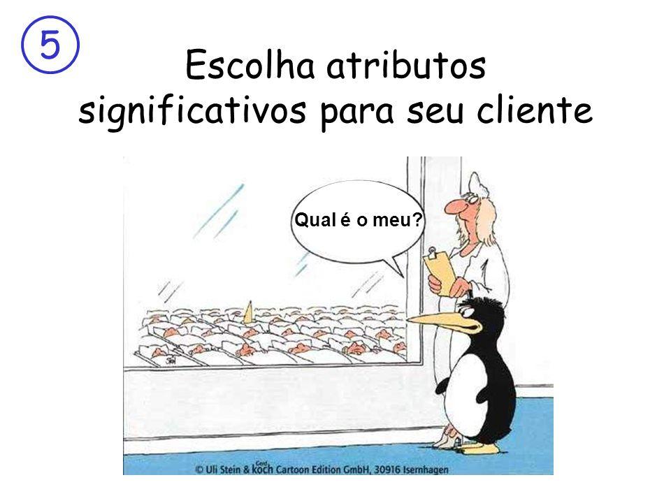 5 Escolha atributos significativos para seu cliente Qual é o meu