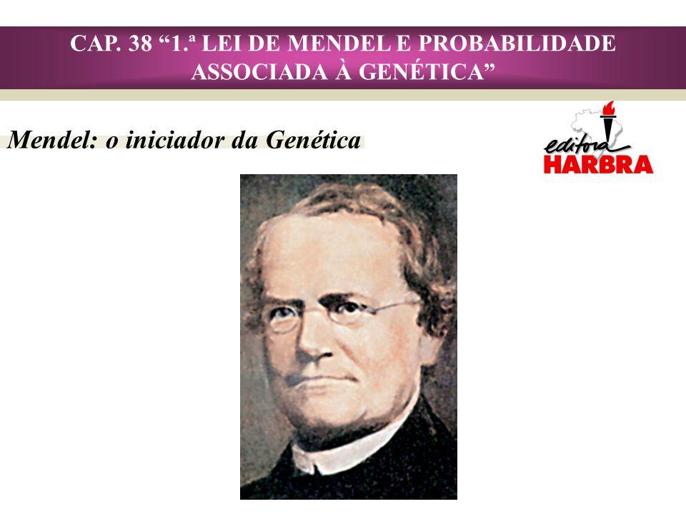Mendel: o iniciador da Genética CAP. 38 1.ª LEI DE MENDEL E PROBABILIDADE ASSOCIADA À GENÉTICA