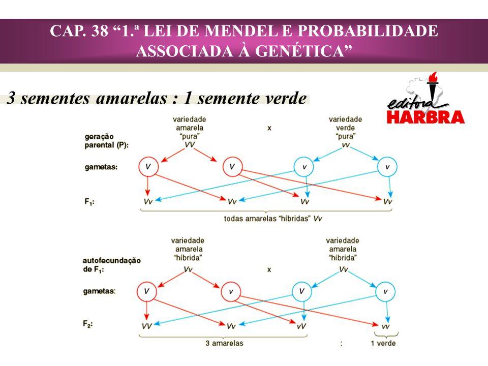 CAP.38 1.ª LEI DE MENDEL E PROBABILIDADE ASSOCIADA À GENÉTICA Lei da Segregação dos Fatores: 1.