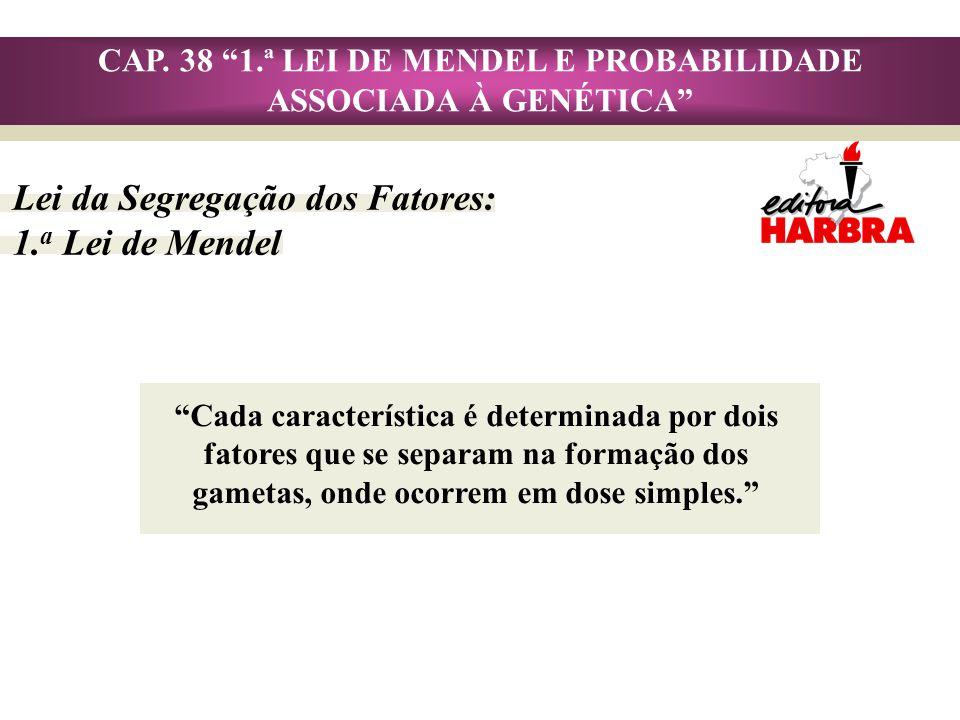 CAP. 38 1.ª LEI DE MENDEL E PROBABILIDADE ASSOCIADA À GENÉTICA Lei da Segregação dos Fatores: 1. a Lei de Mendel Cada característica é determinada por