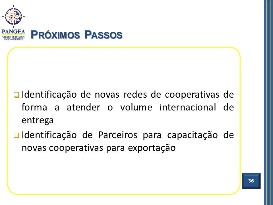 Identificação de novas redes de cooperativas de forma a atender o volume internacional de entrega Identificação de Parceiros para capacitação de novas