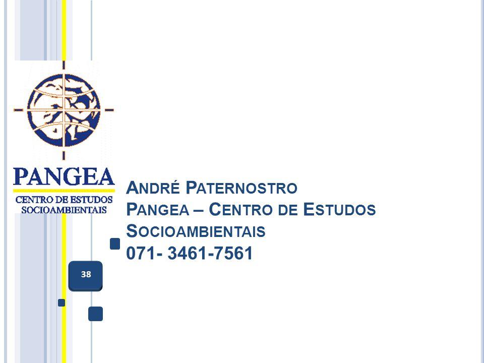 A NDRÉ P ATERNOSTRO P ANGEA – C ENTRO DE E STUDOS S OCIOAMBIENTAIS 071- 3461-7561 38