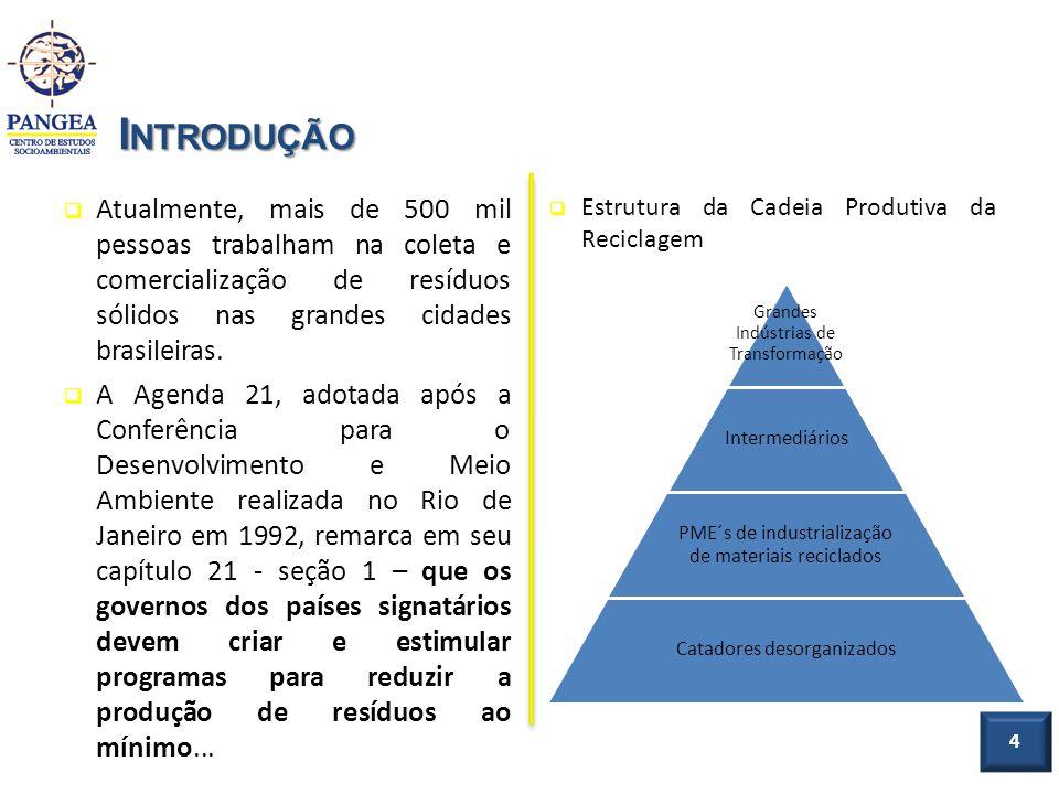4 I NTRODUÇÃO Atualmente, mais de 500 mil pessoas trabalham na coleta e comercialização de resíduos sólidos nas grandes cidades brasileiras. A Agenda