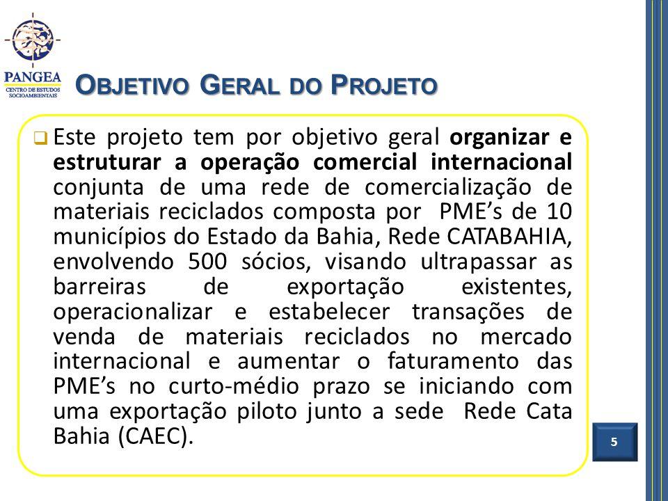 Este projeto tem por objetivo geral organizar e estruturar a operação comercial internacional conjunta de uma rede de comercialização de materiais rec