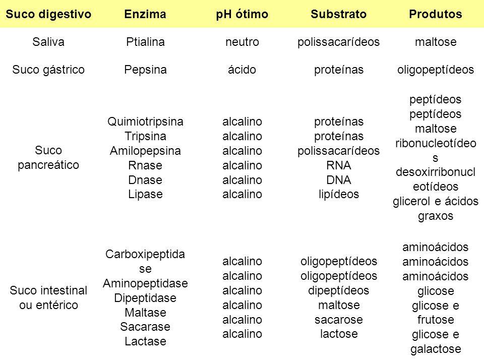 Suco digestivoEnzimapH ótimoSubstratoProdutos SalivaPtialinaneutropolissacarídeosmaltose Suco gástricoPepsinaácidoproteínasoligopeptídeos Suco pancreá