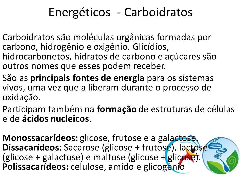 Energéticos - Carboidratos Carboidratos são moléculas orgânicas formadas por carbono, hidrogênio e oxigênio. Glicídios, hidrocarbonetos, hidratos de c