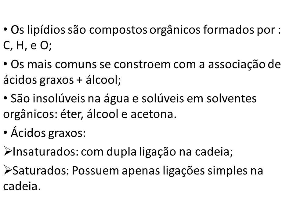Os lipídios são compostos orgânicos formados por : C, H, e O; Os mais comuns se constroem com a associação de ácidos graxos + álcool; São insolúveis n
