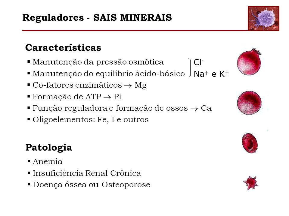 Características Manutenção da pressão osmótica Manutenção do equilíbrio ácido-básico Co-fatores enzimáticos Mg Formação de ATP Pi Função reguladora e