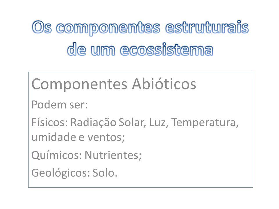 Componentes Abióticos Podem ser: Físicos: Radiação Solar, Luz, Temperatura, umidade e ventos; Químicos: Nutrientes; Geológicos: Solo.