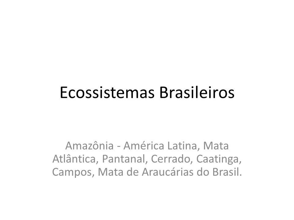 Ecossistemas Brasileiros Amazônia - América Latina, Mata Atlântica, Pantanal, Cerrado, Caatinga, Campos, Mata de Araucárias do Brasil.