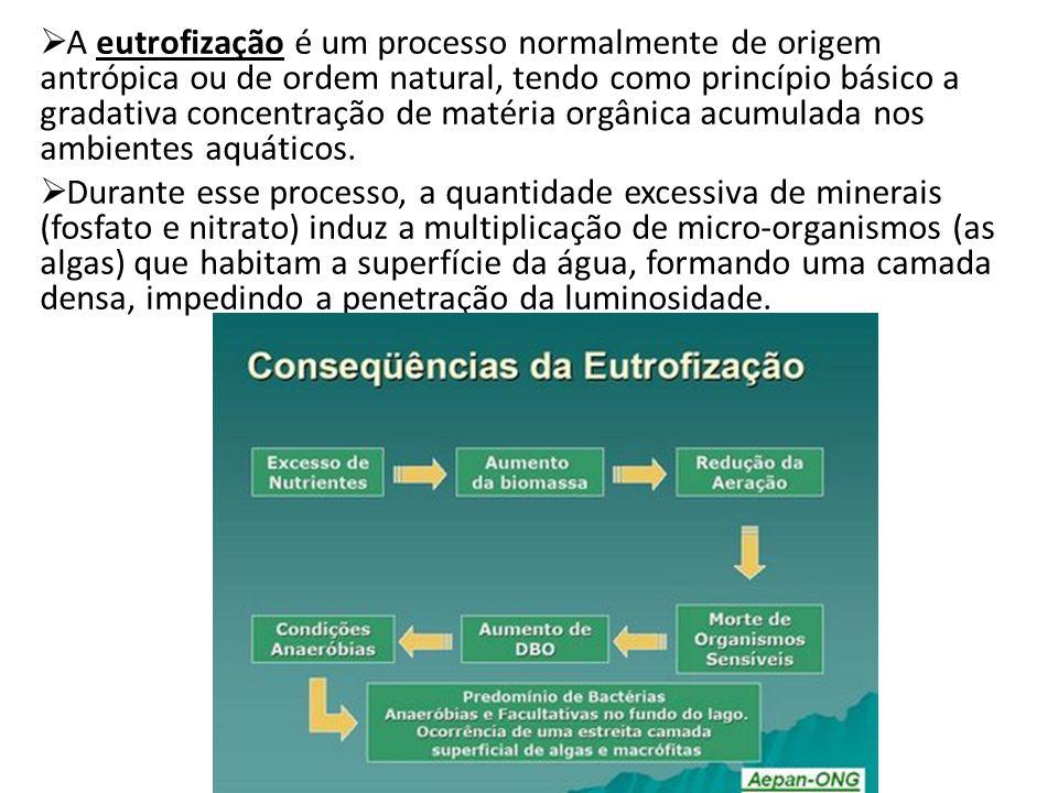 A eutrofização é um processo normalmente de origem antrópica ou de ordem natural, tendo como princípio básico a gradativa concentração de matéria orgâ