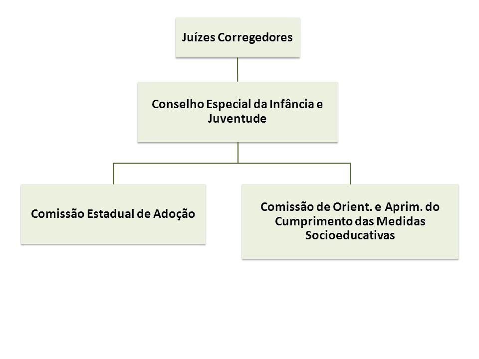 Juízes Corregedores Conselho Especial da Infância e Juventude Comissão Estadual de Adoção Comissão de Orient. e Aprim. do Cumprimento das Medidas Soci
