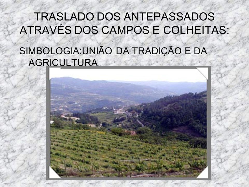TRASLADO DOS ANTEPASSADOS ATRAVÉS DOS CAMPOS E COLHEITAS: SIMBOLOGIA:UNIÃO DA TRADIÇÃO E DA AGRICULTURA