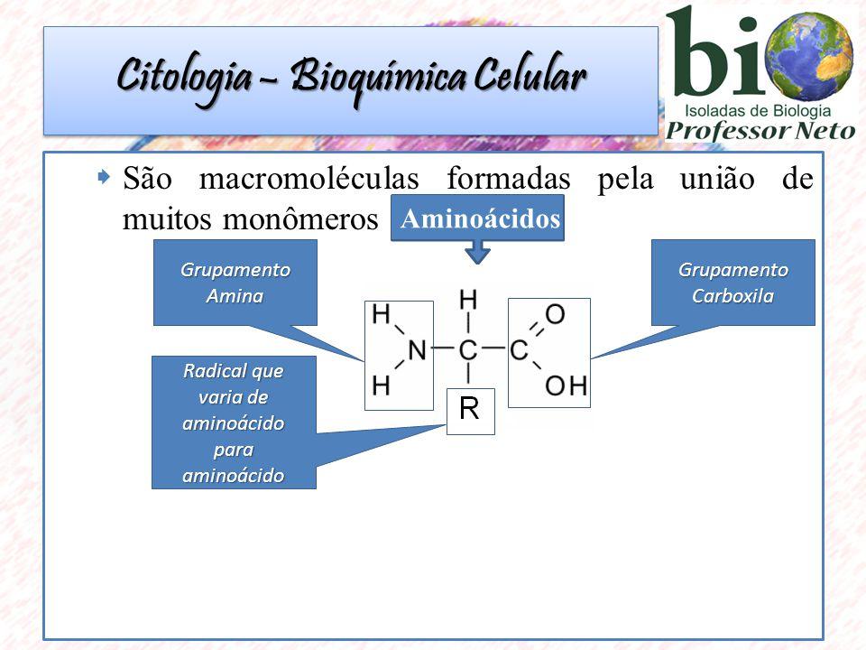 São macromoléculas formadas pela união de muitos monômeros Aminoácidos Grupamento Carboxila Grupamento Amina Radical que varia de aminoácido para aminoácido Citologia – Bioquímica Celular