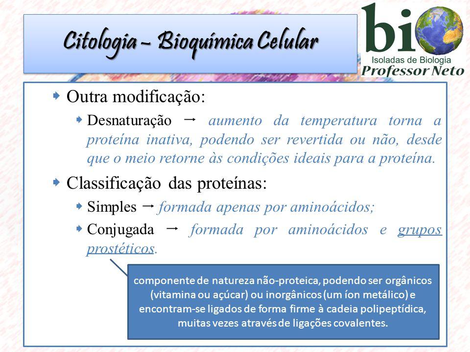 Outra modificação: Desnaturação aumento da temperatura torna a proteína inativa, podendo ser revertida ou não, desde que o meio retorne às condições ideais para a proteína.