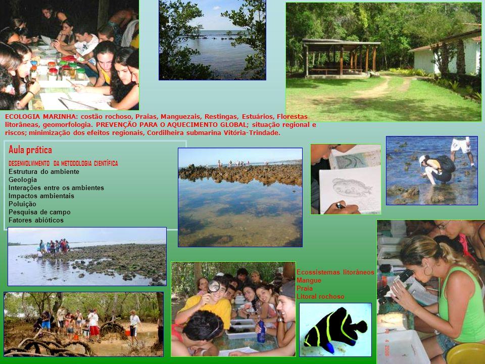 ECOLOGIA MARINHA: costão rochoso, Praias, Manguezais, Restingas, Estuários, Florestas litorâneas, geomorfologia.