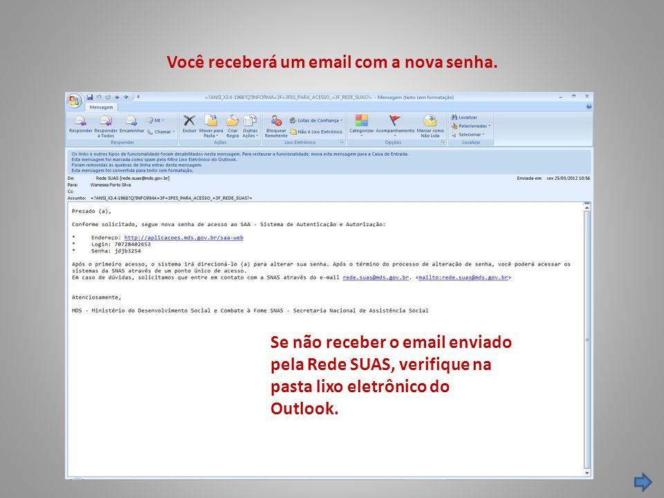 Você receberá um email com a nova senha. Se não receber o email enviado pela Rede SUAS, verifique na pasta lixo eletrônico do Outlook.