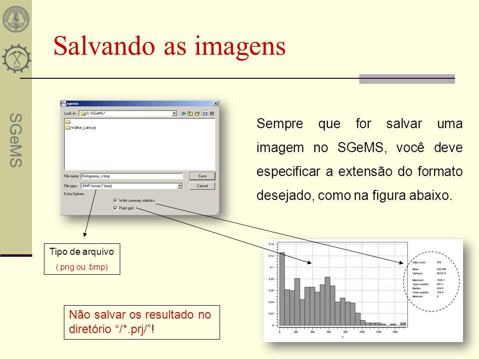 SGeMS Salvando as imagens Tipo de arquivo (.png ou.bmp) Não salvar os resultado no diretório /*.prj/! Sempre que for salvar uma imagem no SGeMS, você