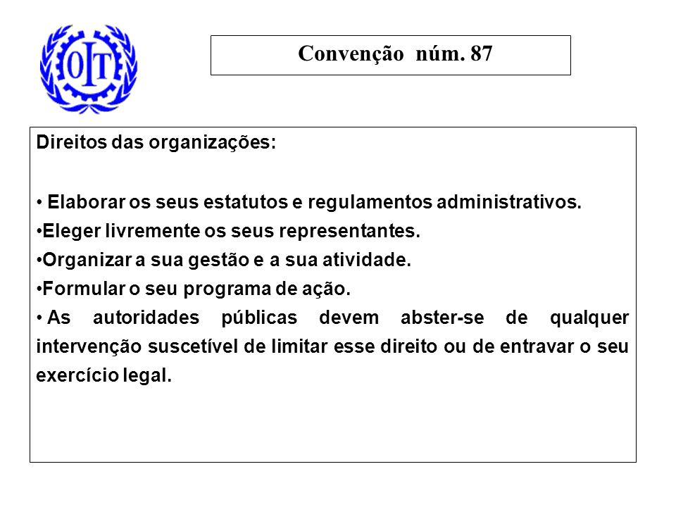 Direitos das organizações: Elaborar os seus estatutos e regulamentos administrativos.