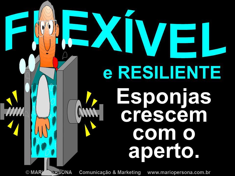 © MARIO PERSONA Comunicação & Marketing www.mariopersona.com.br Esponjas crescem com o aperto.