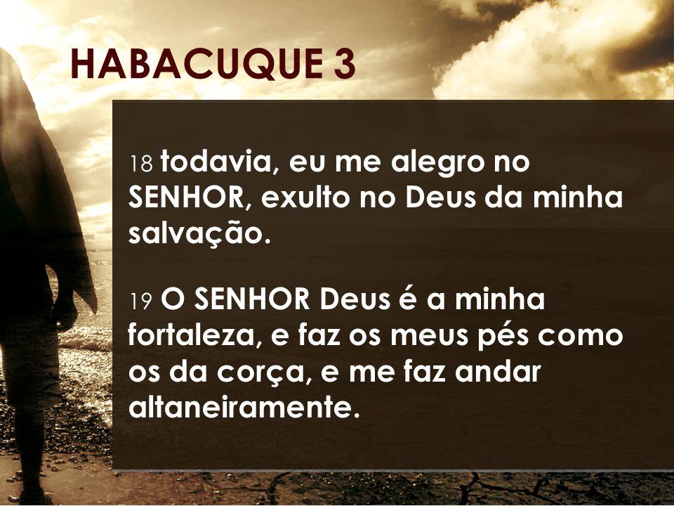 18 todavia, eu me alegro no SENHOR, exulto no Deus da minha salvação. 19 O SENHOR Deus é a minha fortaleza, e faz os meus pés como os da corça, e me f