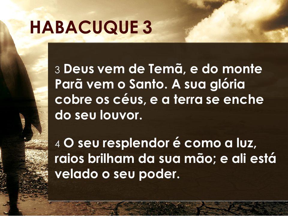 3 Deus vem de Temã, e do monte Parã vem o Santo. A sua glória cobre os céus, e a terra se enche do seu louvor. 4 O seu resplendor é como a luz, raios