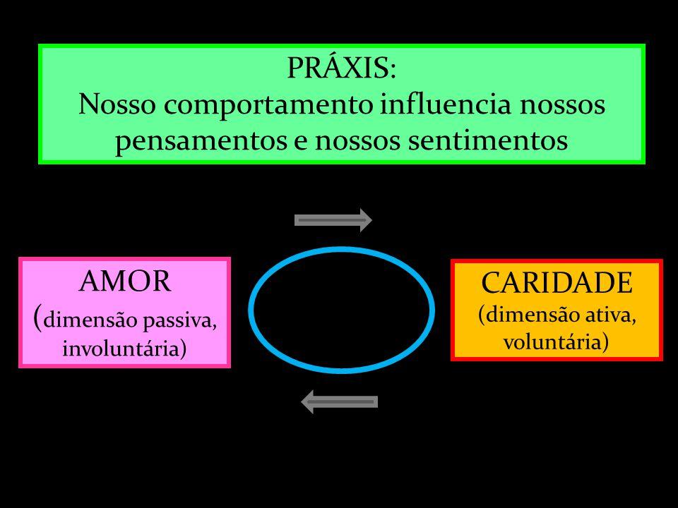 AMOR ( dimensão passiva, involuntária) CARIDADE (dimensão ativa, voluntária) PRÁXIS: Nosso comportamento influencia nossos pensamentos e nossos sentim