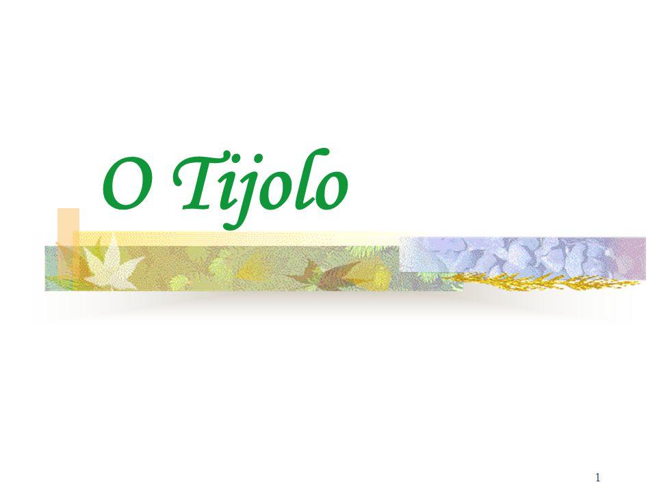 1 O Tijolo